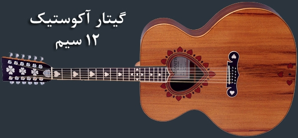 گیتار آکوستیک 12 سیم و انواع ساز گیتار