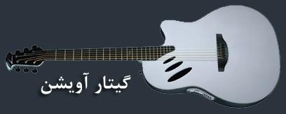 گیتار آویشن و انواع ساز گیتار
